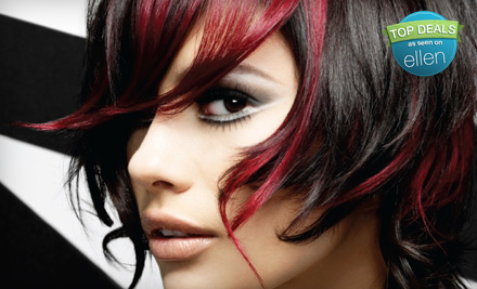 Salon Package: Includes Cut and Style, Basic Color, and Eyebrow Wax