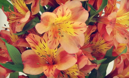 Hand-Tied Bouquet Class (a $35 value)